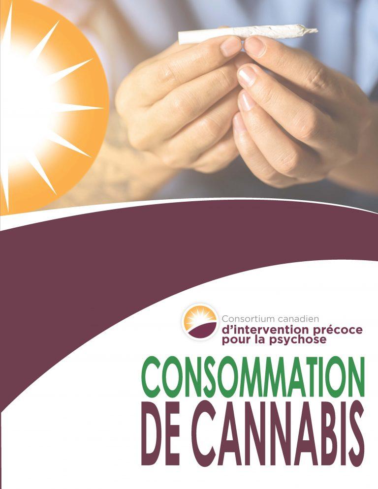2018 CCEIP Cannabis Tear Pad - Consommation de Cannabis - FR (pdf)_Page_1